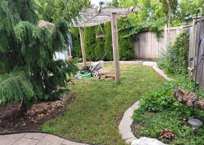 backyard garden with flowers