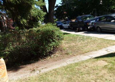 walkway on front yard
