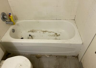 pre-sanitized bath tub